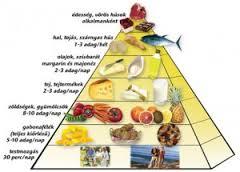 egészséges.táplálkozás.piramis